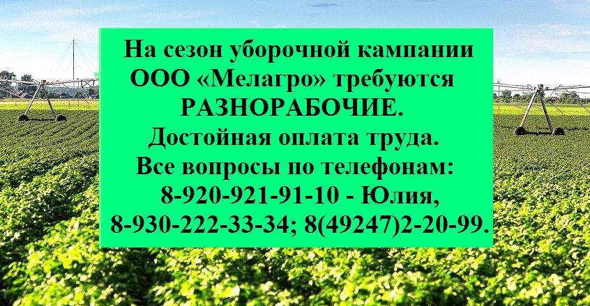 "ООО ""Мелагро"" 15"